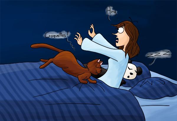 Se faire réveiller par son chat à 6 heures du matin