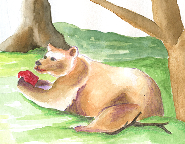 Recherche à l'aquarelle illustration animal ours