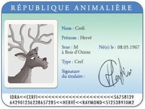 Carte d'identité Hervé le cerf