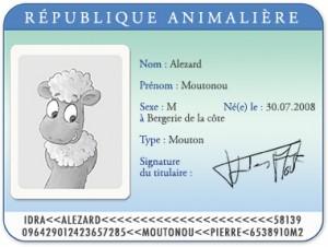 Carte d'identité Moutonou le mouton