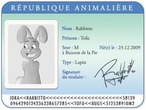 Carte d'identité Tofu le lapin
