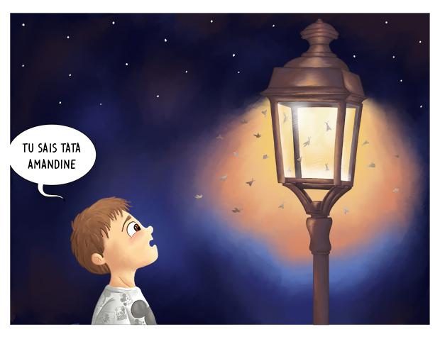 La nuit les papillons sont attirés par la lumière