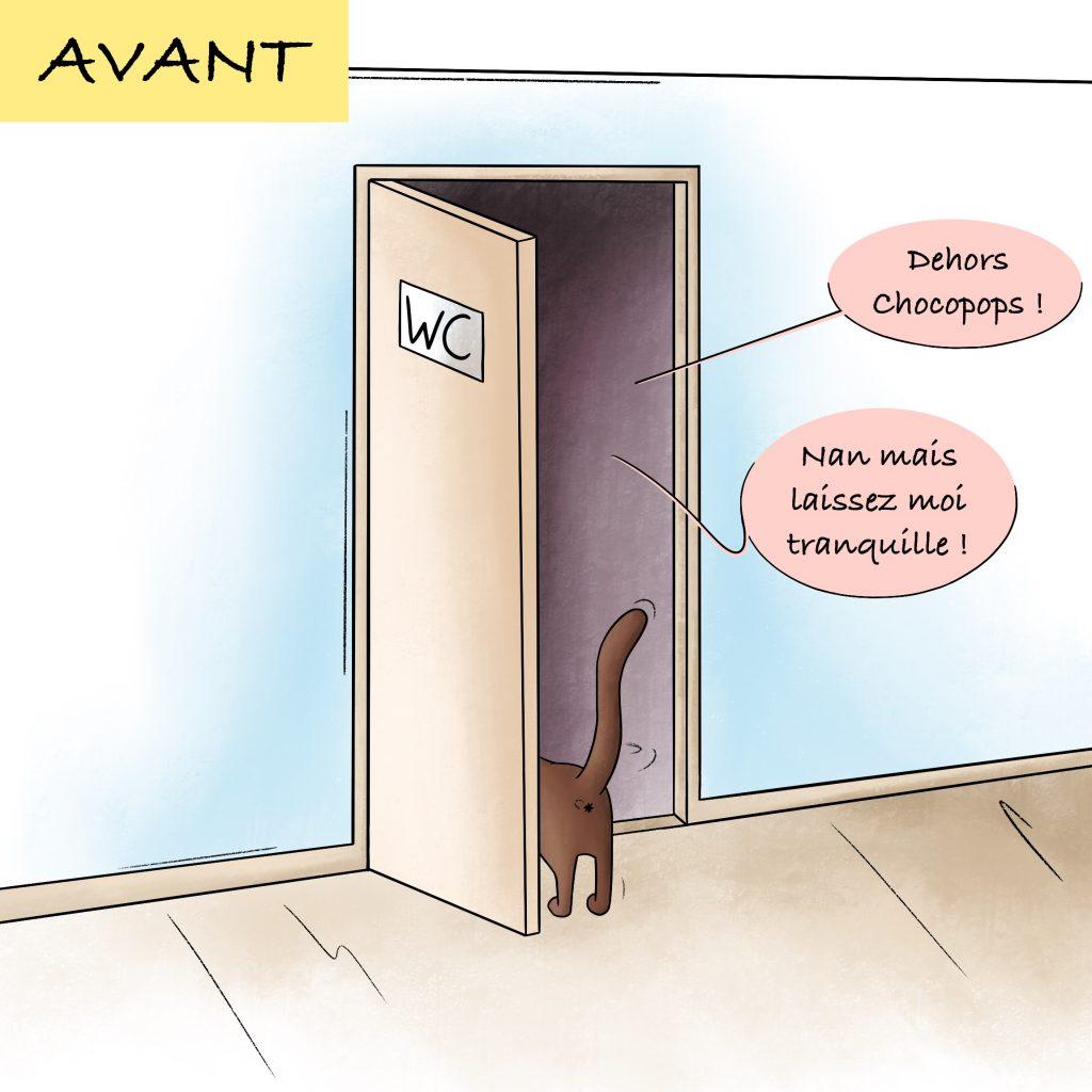 Pourquoi les chats nous suivent toujours aux toilettes
